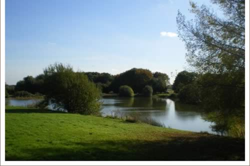 A view of The Willow Fishing Lake for coarse fishing